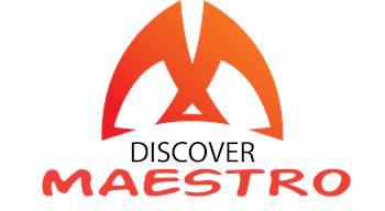 Maestro Strategic Solutions