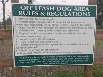 Fort Steilacoom Large Dog Park